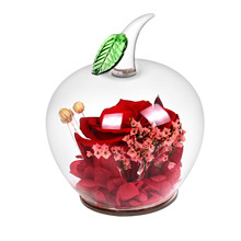 Long Forever Rose With Gift Box Apple Shape Glass Unique For ValentineS Day MotherS ChristmasS LoverS Bi