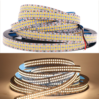12V 24V Led Strip Light SMD2835 480leds/M 2400LEDs Double Row Flexible Rope Lighting Good Decoration Neon Lights 20 24W/M 5M