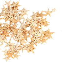 Small Starfish Star Sea Shell Beach Craft 0.4 inch-1.2 inch 90 Pcs