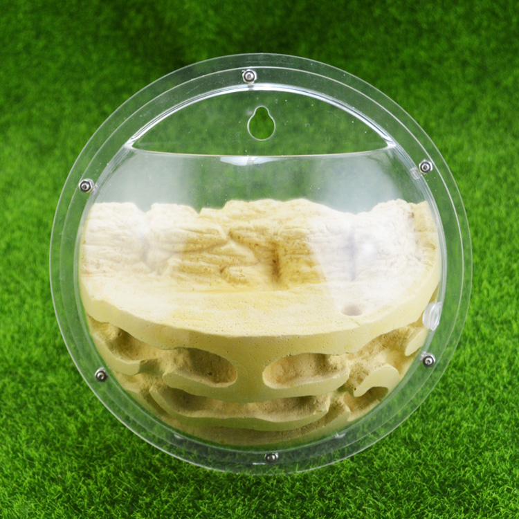 1PCS High Definition Acrylic Semi Circle Hanging Ant Nest Outer Diameter 185mm Ant Farm Ant Feeding
