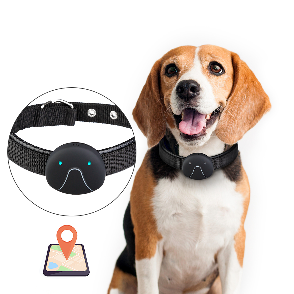 new-arrival-2g-smart-mini-electric-dog-collar-pet-gps-location-tracker-pet-waterproof-collar-dog-finder-wifi-usb-rechargeable
