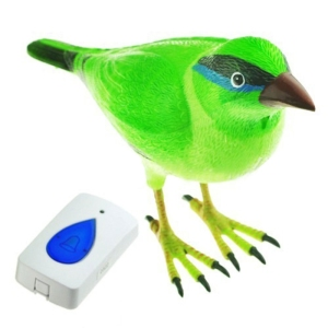 Digital Bird Doorbell Home Wir