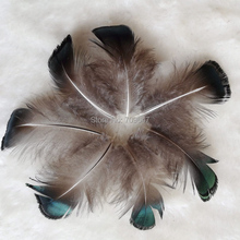 500pcs/Lot 3-5CM Loose Small Green Bronze Lady Amherst Pheasant Plumage Feathers for Jewelry Making,Costumes,Cheap