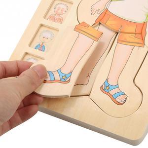 Image 3 - أطفال خشبية لغز لعب هيكل جسم الإنسان متعدد الطبقات لعبة الطوب الطفل التعليم المبكر ذكي التعلم الإدراك لعبة