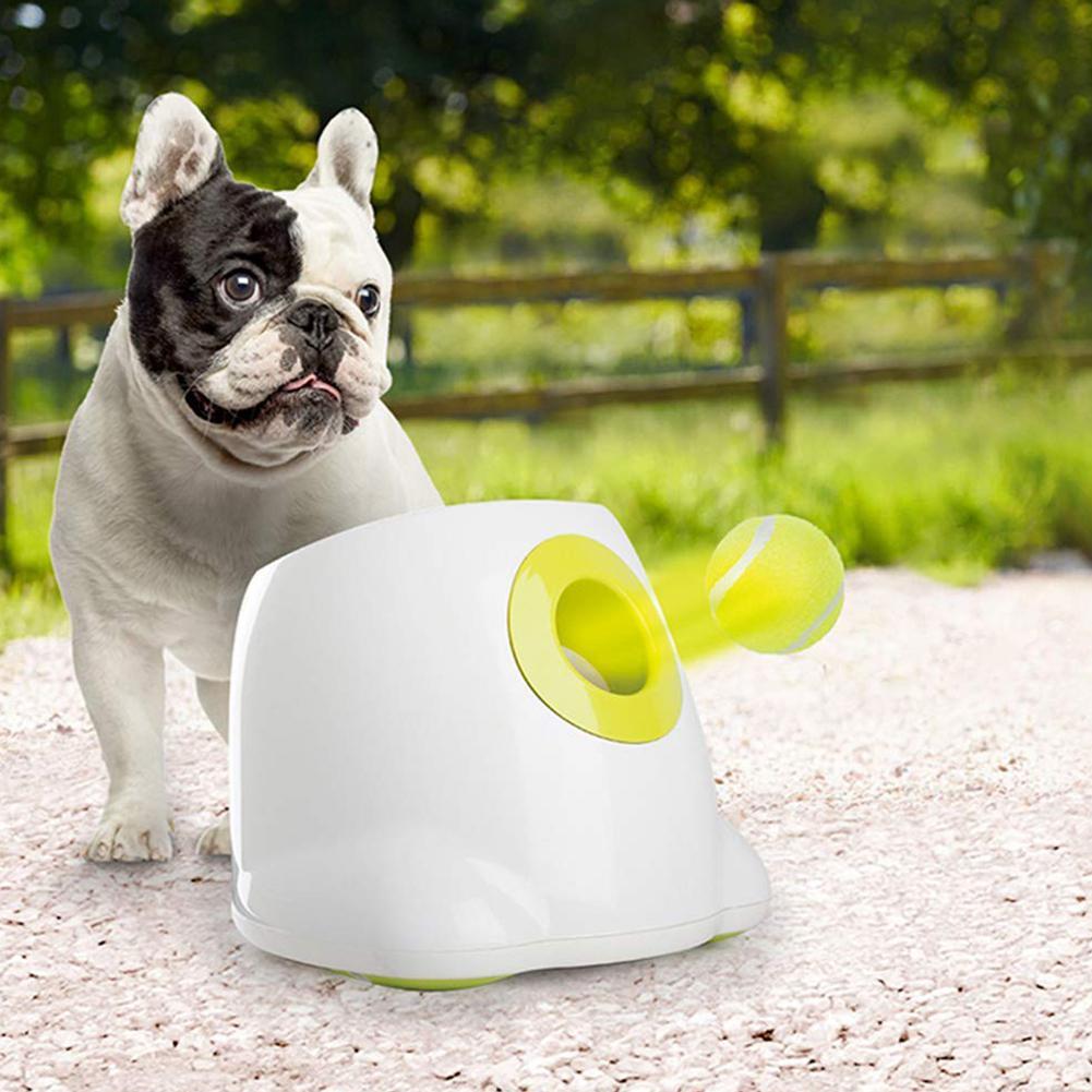 Balles de Tennis pour animaux de compagnie remplacement exercice formateur lanceur lanceur jouets drôles chat rebond Sport jouet pour chiot chien chat