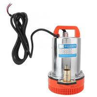 DC 12V Electric Submersible Deep Well Water Pump Irrigation Water Pump