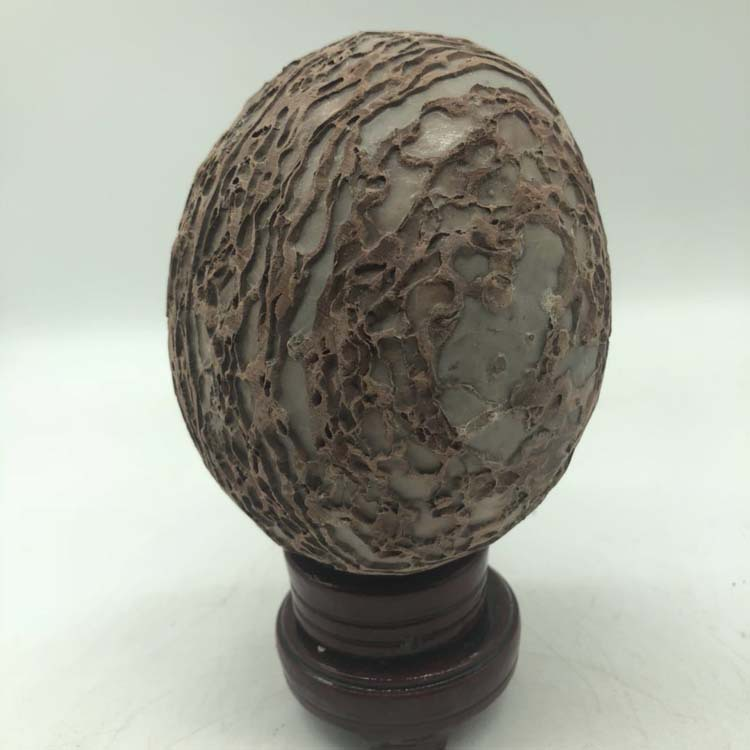 Natural bark stone dinosaur egg landscape stone mineral specimen personality home office decoration in Stones from Home Garden