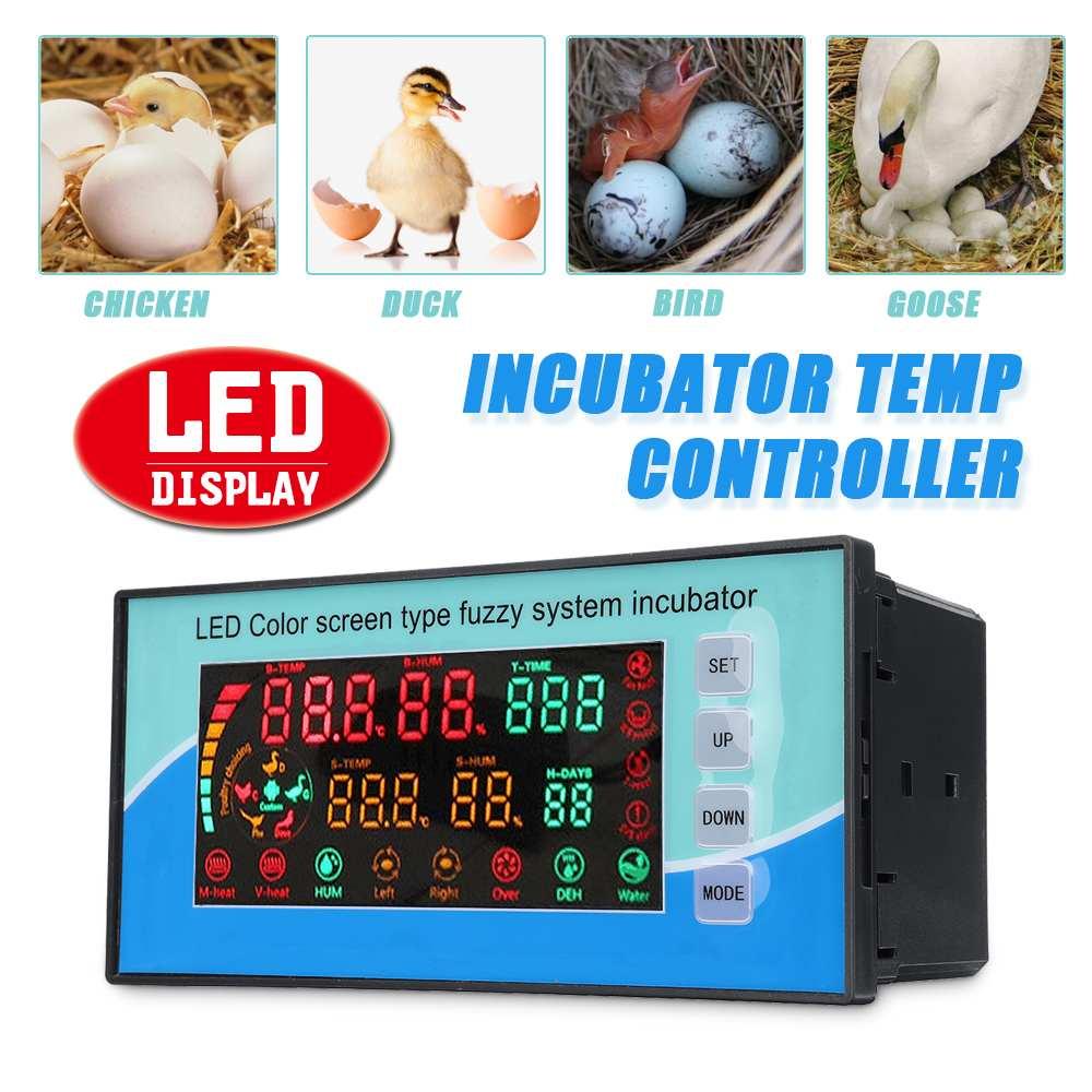 Thermostat de régulateur de température d'incubateur de LED numérique 220 V avec 2 câbles de capteur pour Machine à couver intelligente automatique