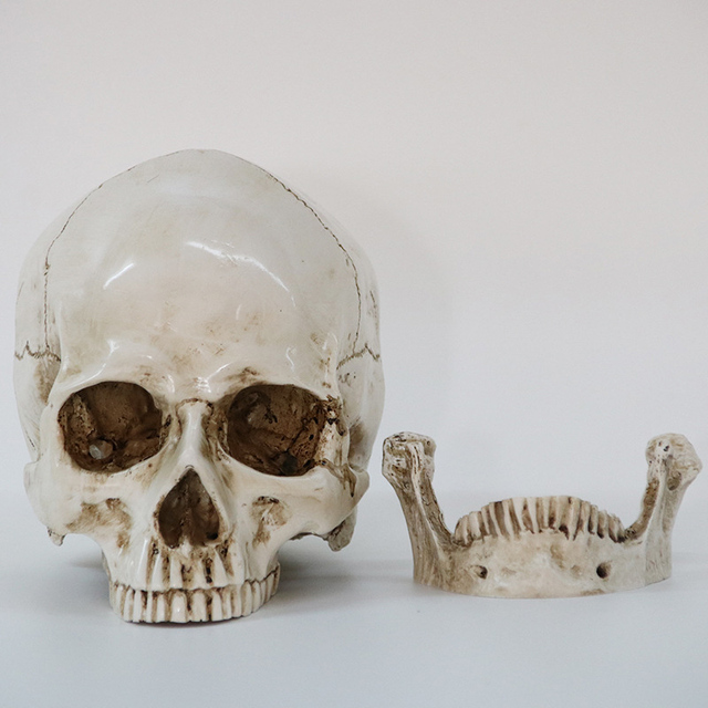 Statues Sculptures Resin Halloween Home Decor Decorative Craft Skull Size 1:1 Model Life Replica Medical High Quality 2