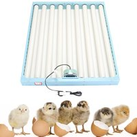 Blue 360 Degree Chicken Eggs Turner Automatic Incubator Duck Quail Bird Poultry Eggs Tray Farm Incubation Tools Supplies