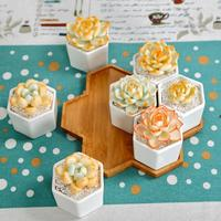 Planter Pots 7 Pcs/pack Geometric Style Small Hex Succulent Floral Bamboo Tray Home Gardening Supplies Home Decoration