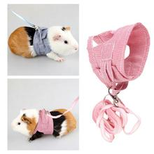 Small Pet Two-legged Chest Strap Outdoor Traction Rope Leash