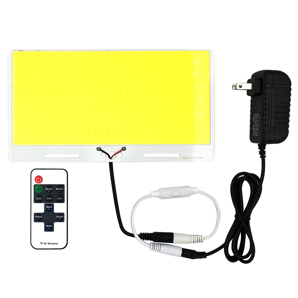 Cool White LED Panel Light 200W 12V COB Lamp With Dimmer Controller 220*120mm 110V 220V LED Bulb For Indoor Outdoor Car Lighting