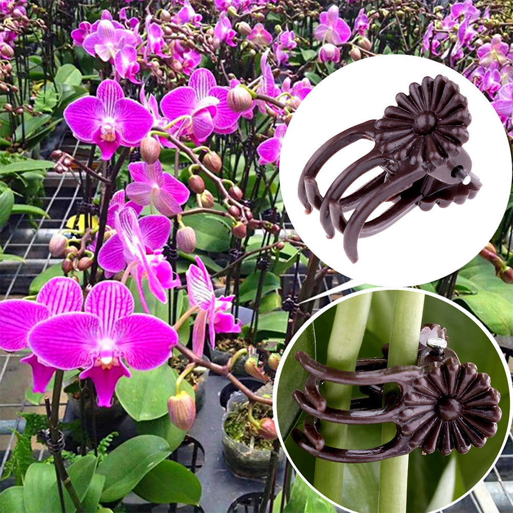 100Pcs Grafting Tool Stems Hanging Garden Clips Plant Support Vine Orchid Flower Plastic Decoration Stalks Fix Grow Upright