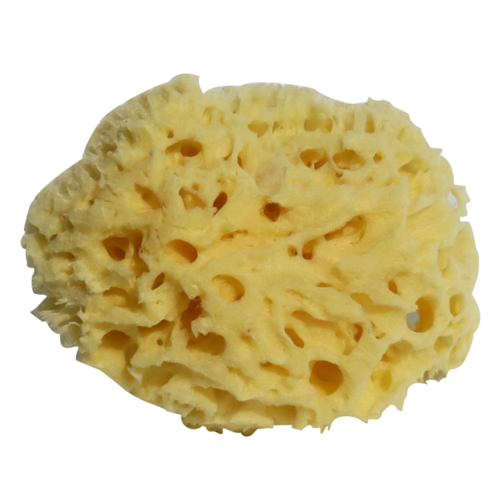 1pc Sponge Ball Comfortable Soft Honeycomb Natural Seaweed Washing Supplies Cleaning Ball For Body Face Skin Back To Search Resultsbeauty & Health Bath & Shower