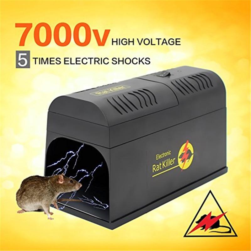 LOT Rat Live Trap Bottle Mice Mouse Mole Rodent Humane Cage Control Catch Bait