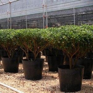 Image 5 - 100 adet küçük Mini toprak saksı kil seramik çömlek ekici kaktüs saksı etli kreş tencere siyah ev bahçe dekor