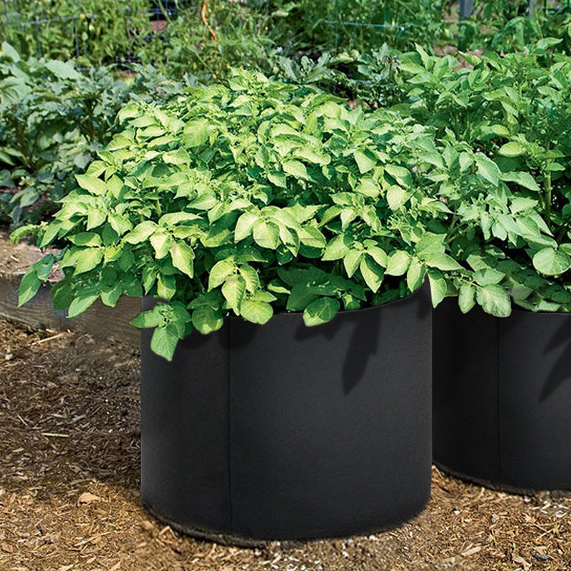 3 PCs 1/2/3 gal Black Garden Grow bags for plants Non Woven Fabric Plant Pouch Root Container Grow Bag Aeration Pot Container-in Grow Bags from Home & Garden