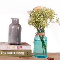 Office Desktop Decor Creative Hydroponic Bottle Vase Home Decor Transparent Crystal Glass Vase