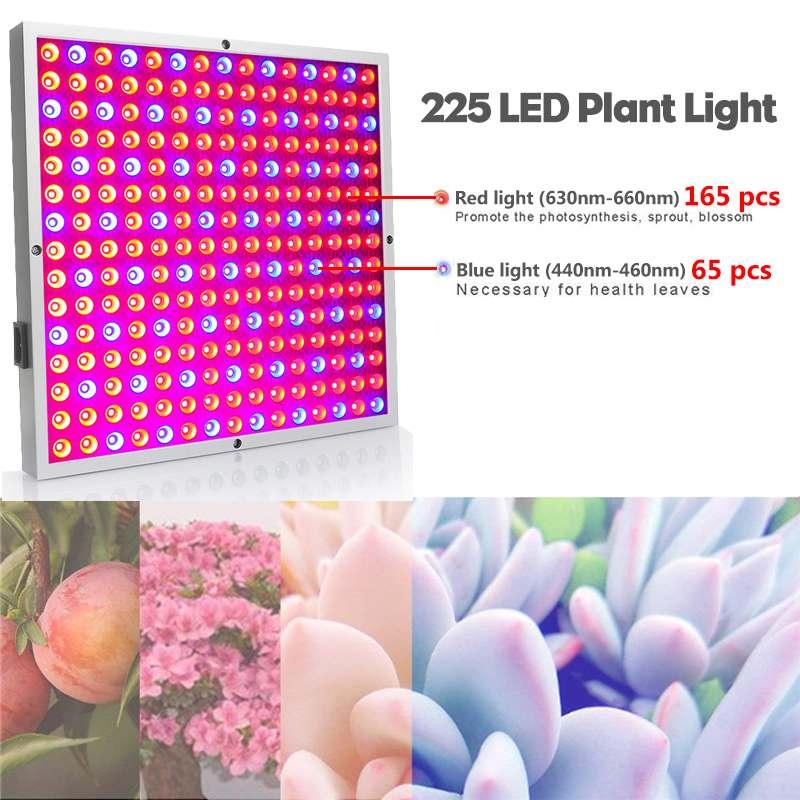 50W Growing Lamps 225pcs LED Grow Light AC85 265V Full Spectrum Plant Lighting Flowers Seedling Cultivation IP55 US/UK/EU/AU