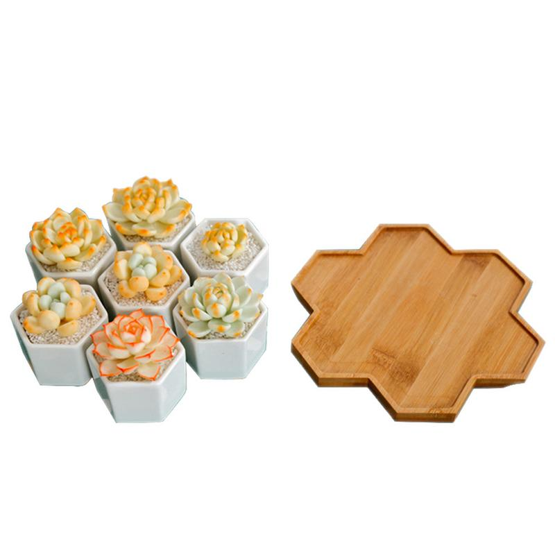 7 Pack Geometric Style Small Hex Succulent Floral Bamboo Tray Potted Flower Pots Trays Home Gardening Supplies High Quality