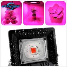 Indoor Outdoor COB Led Grow Flood light 100W 200W 110V 220V IP67 Waterproof Light For Plant Grow With EU Plug/US plug Grow Lamp(China)