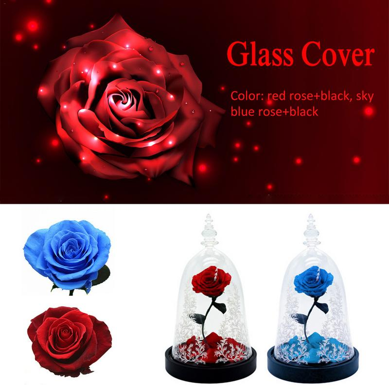 Preserved Fresh Flower Glass Cover Multi Color Real Rose Unique Crafts Decoration For Birthday Festival