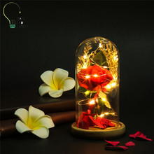 NEW Birthday Gift Preserved Flowers LED night light Rose Flower ValentineS Day Home Decoration Wedding