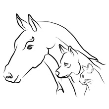 Animal Horse Dog Cat Fashion Car Sticker motorcycle Creative Classic Styling Vinyl Decals