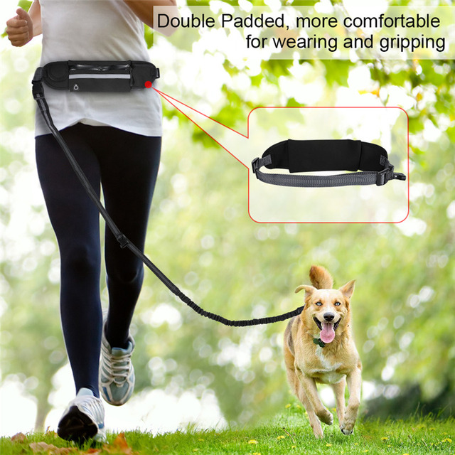 Nylon Dog Running Leash Hands Free Walking Show Lead Leash For Small Medium Dog Puppy Cat Pet With Retractable Bungee Waist Belt 5
