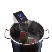 ITOP Sous Vide плита низкая температура медленно машина коммерческих вакуум еда процессор чистый вареный стейк пособия по кулинарии