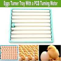 1 Set 360 Degree Chicken Eggs Turner Automatic Incubator Duck Quail Bird Poultry Eggs Tray Farm Incubation Tools Supplies