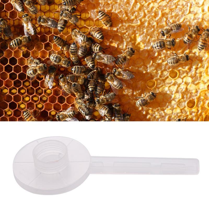 1 шт. пластиковый питатель пчел круговой пчелы питьевой фонтаны пчелы подачи для кормления воды пчеловодства инструменты пчеловода насадка для опрыскивания