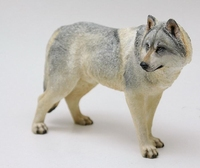 Steppe Wolf Hand Painted Resin Figurine Statue 1:6 Simulation Model