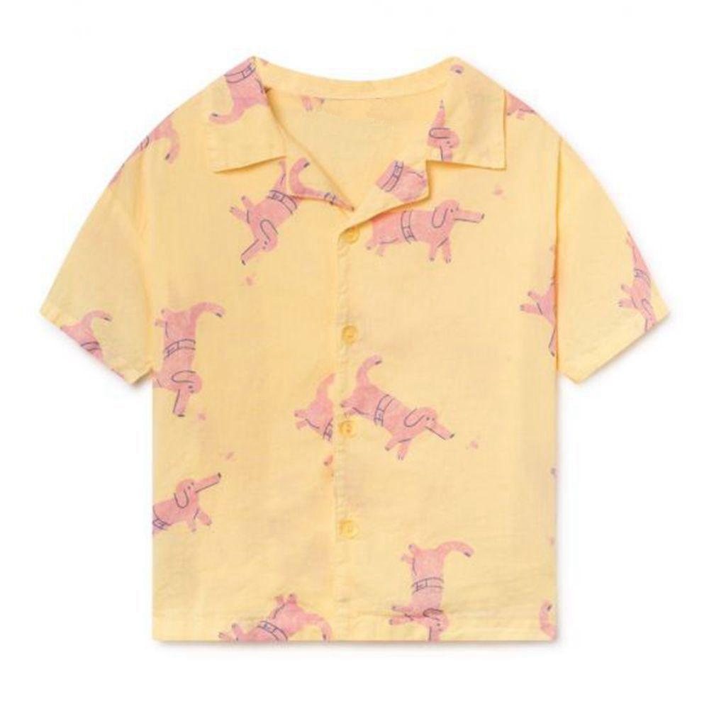 Minichose Boys T Shirts Summer T shirts Boy Short Sleeve Tops Tees Printed Kids Clothes Polo Shirt Children Clothing Bobo Chose