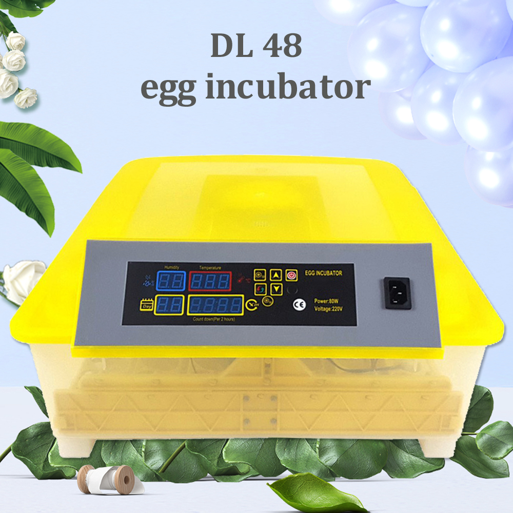 48 Led Display Poultry Hatchery Machine Mini Digital Egg Incubator China Chickens Ducks Goose Birds Brooder Hatcher48 Led Display Poultry Hatchery Machine Mini Digital Egg Incubator China Chickens Ducks Goose Birds Brooder Hatcher