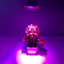 E27 12LEDs Full Spectrum 220V LED Plant Grow Light Bulb Fitolampy Phyto Lamp Indoor Garden Plants Flower Hydroponics Grow Tent(China)