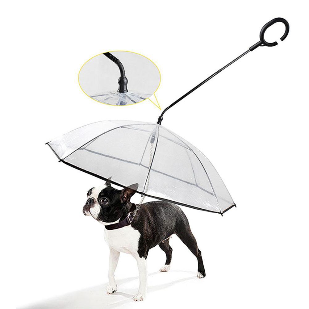 Telescopic Handle Transparent Pet Umbrella With Dog Leash For Rain Walking