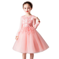 Spring Autumn Long Sleeves Lace Embroidery Ball Gown Kids Mesh Dress Girls Children Flower Birthday Party Princess Tutu Dresses