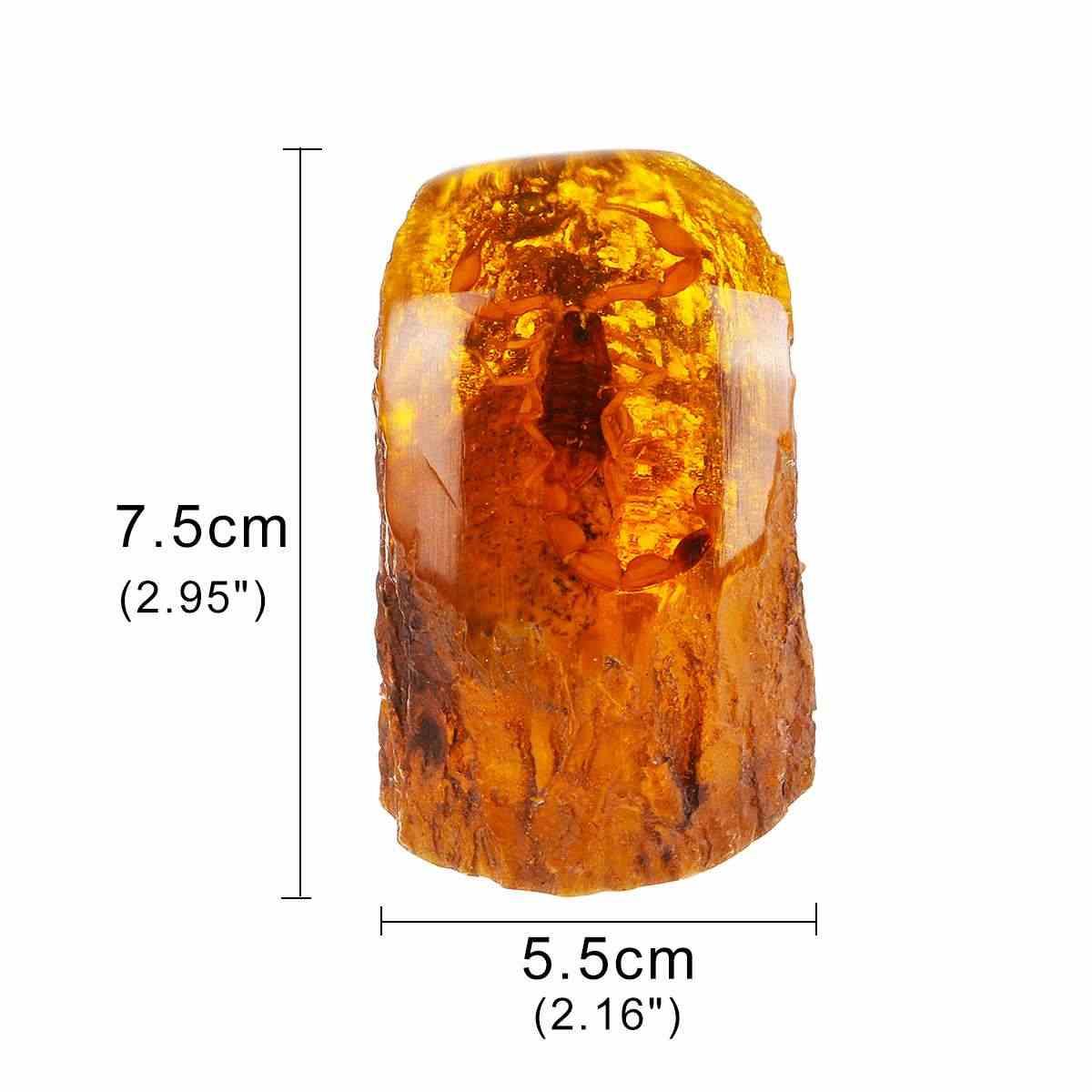 Amber Serangga Kalajengking Sampel Batu Kristal Spesimen Imitasi Penyembuhan Dekorasi Rumah Koleksi