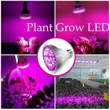 E27 220V LED Plant Grow Light Bulb Fitolampy Phyto Lamp For Indoor Garden Plants Flower Hydroponics Grow Tent Box(China)