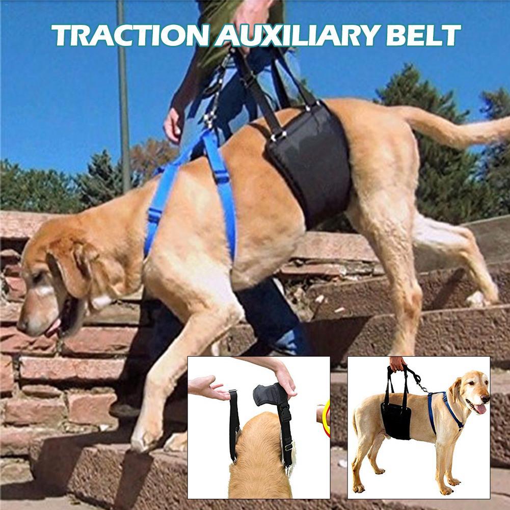 Dog Sling Lift Harness Leg Brace Hind Leg Help Walking Dogs font b Pet b font