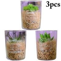 3PCS Artificial Succulent Decorative Artificial Plant Fake Plant with Glass for Home Decoration
