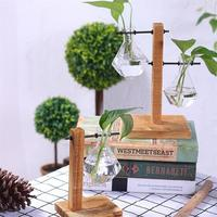 Adeeing Creative Transparent Water Planting Glass Vase With Wooden Stand Desktop Decoration Flowerpot Gift