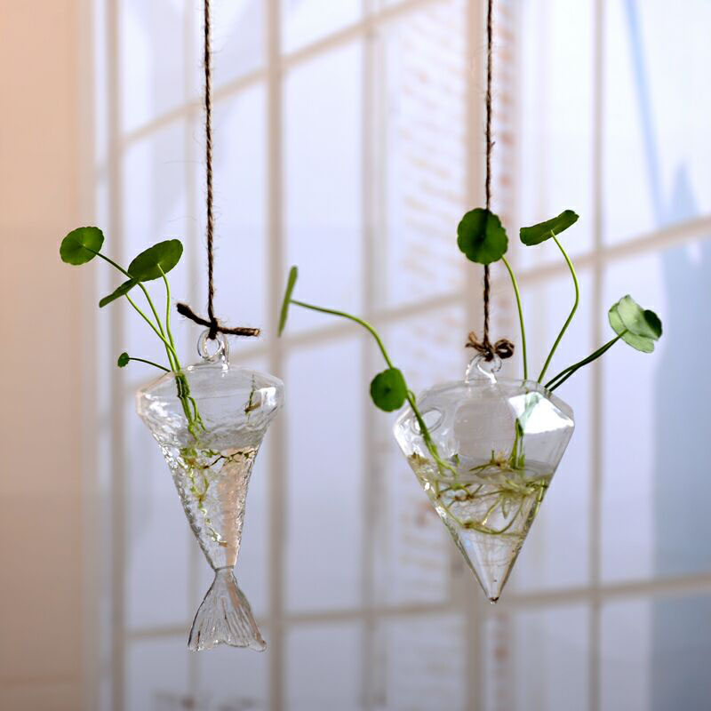 Clear Terrarium with Rope Made with Borosilicate Glass Ideal for Bedroom/Living Room and Office 1