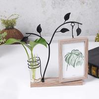 Desktop Ornaments Double sided Photo Frame Hydroponic Plant Photo Frame