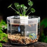 Four Grid Free Water Change Betta Fish Tank Acrylic Mini Fish Tank With Water Pump Basket Isolation Board