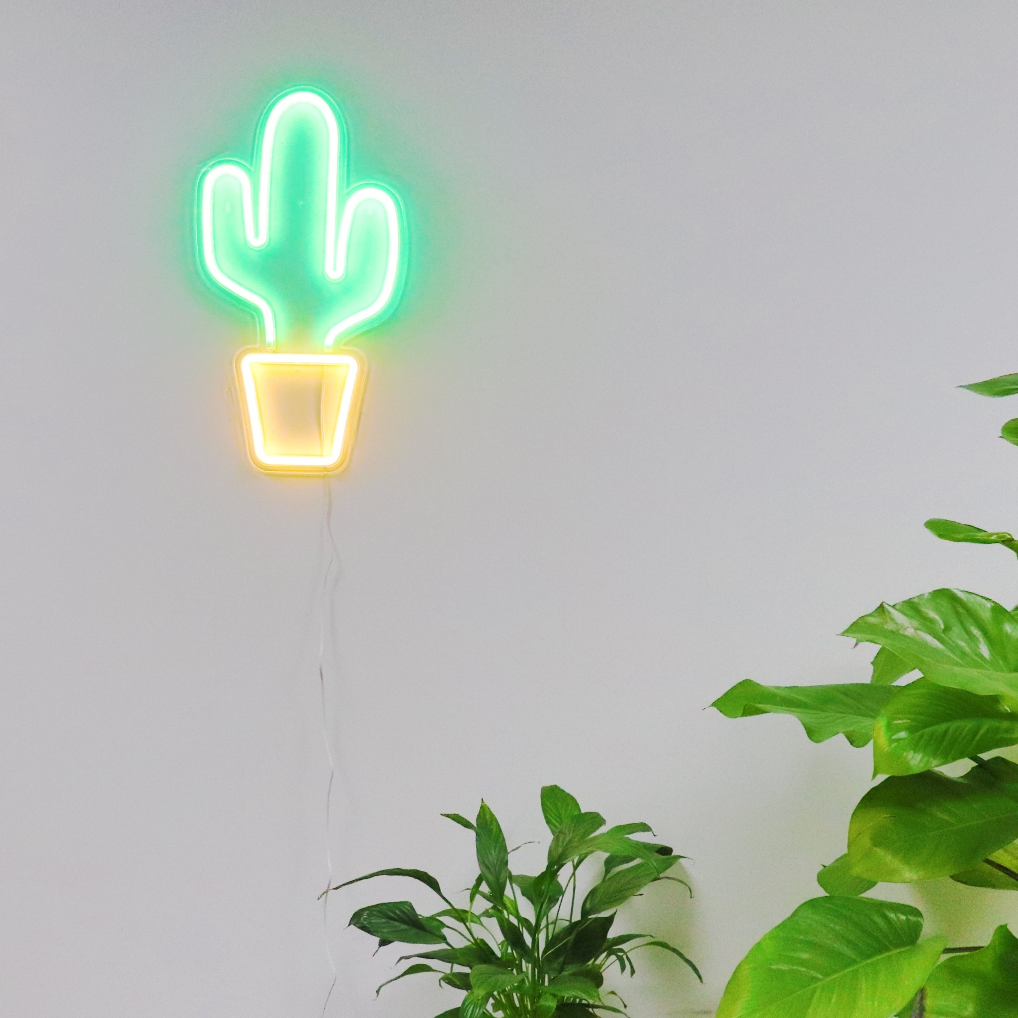 TONGER Cactus Acrylic Wall LED Neon Sign Christmas Lights Indoor Color Changing Light