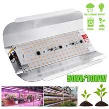 HOT Sale LED Grow Light 50W 100W 60lm/W Full Spectrum Phyto Flood lights Iodine Lamp AC 220V LED Grow Lamp IP65 Waterproof