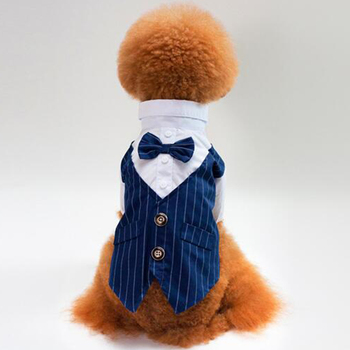 Wedding Suit Pet Tuxedo Costume 1
